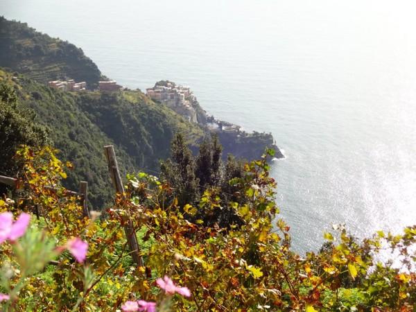 Riomaggiore-Corniglio