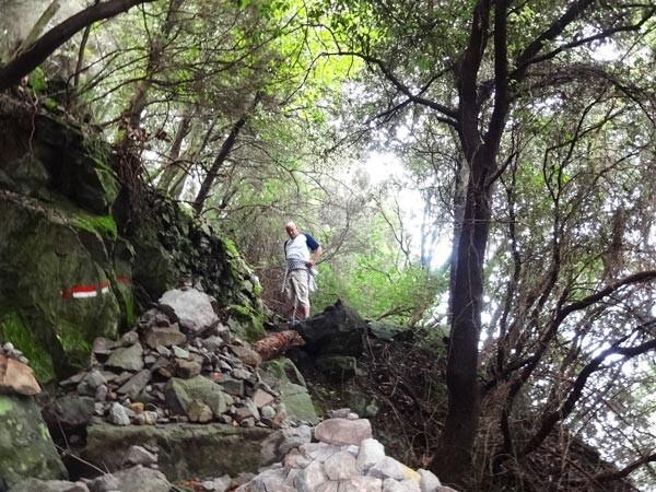levanto-monterosso-wanderweg