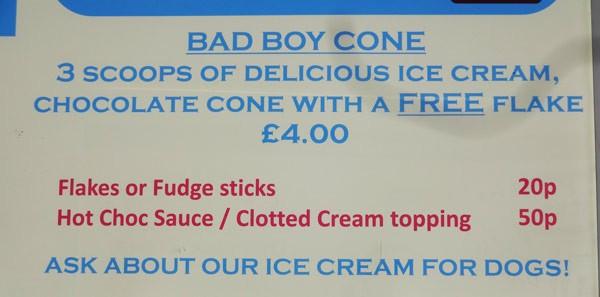 Bad Boy Cone und Eis für Hunde